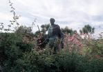 Statue of Father Junipero Serra, Mission San Carlos Borromeo de Carmelo