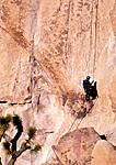 ROCK CLIMBING JOSHUA TREE NATIONAL PARK