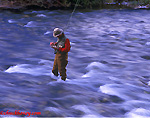 Flyfishing @ Rock Creek