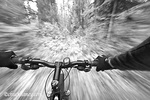 Cruising down a buff section of singletrack trail from the riders perspective near West Glacier Montana