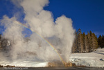 Riverside Geyser erupts along the Firehole River on a nice sunny winter day in Yellowstone National Park