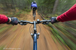 Point of view of singletrack riding at the Pig Farm Trails near Whitefish, Montana, USA