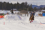 Skijoring competition in Whitefish, Montana, USA