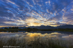 Small pond reflects the Mission Mountains at sunrise in the Ninepipe WMA in the Mission Valley, Montana, USA