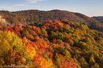Autumn color in Nicholas County, West Virginia, USA