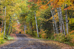 Leaf strewn gravel road with autumn color near Copper Harbor, Michigan, USA