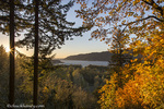 Setting sun lights up autumn color over looking the Columbia River in the Columbia Gorge National Scenic Area, Oregon, USA