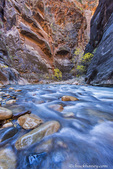 The Narrows of the Virgin River in autumn in Zion National Park, Utah, USA
