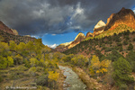 The Virgin River in autumn under dramatic storm clouds in Zion National Park, Utah, USA