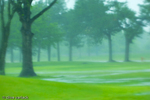 Heavy rains on a golf course