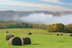 Early morning fog rises above this field of hay bales on an autumn day