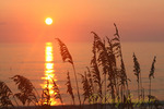 Sunrise and Sea Oats, Outer Banks North Carolina