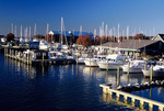 Marina at Tilghman Island, Maryland