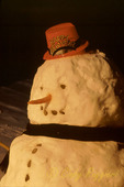 Happy New Year Snowman