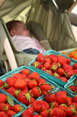 Strawberries at the fruit stand, sleeping baby in background