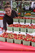 Strawberry Festival, Owego New York