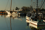 Work boats, Tilghman Island, Maryland