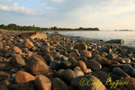 Rome Point, John H. Chafee Nature Preserve, North Kingston, Rhode Island