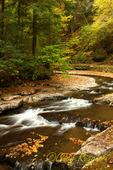 Fillmore Glen State Park, Moravia, NY, Finger Lakes region