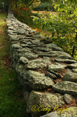 Old stone wall in Glocester Rhode Island