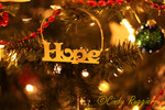 'Hope' at the Holidays