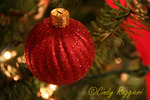 Glittery red ornament