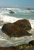 Rocky coastline of Block Island, Rhode Island