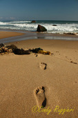 Footprints in the sand, Block Island, Rhode Island