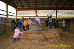 Jumping on hay bales