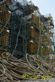 Pile of lobster traps and rope