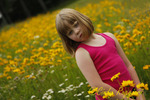 Young girl in field of coreopsis