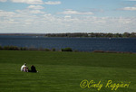 Picnic on the Waterfront, Bristol, Rhode Island
