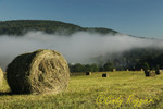 Fog rising over hay bales