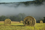 Early morning fog rises over hay bales