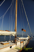 Classic Schooner 'True Love', Seneca Lake, Watkins Glen NY