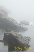Fog over Otter Cliff, Acadia National Park, Maine