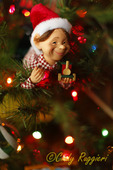 Elf on the Christmer Tree