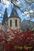 Spring colors, church steeple