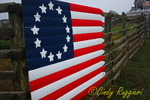 Block Island Fence Flag