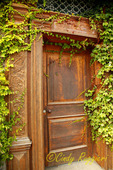 Original building for Taylor Winery, Hammondsport, NY, Weathered door and ivy