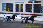 Tioga Downs Harness Racing, Nichols New York