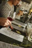 Wine Tasting at Standing Stone Vineyards, Hector New York