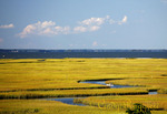 Kayaker in the marshy waters, Chincoteague, Virginia