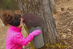 Maple Weekend, March, New York state, young girl checks the sap bucket