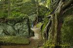 Panama Rocks, located in Western New York, Chautauqua County