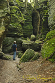 Panama Rocks, located in Western NY, Chautauqua County