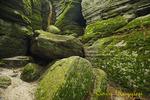 Panama Rocks, located in Western NY, Chautauqua County
