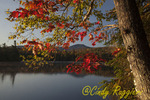 Early morning at Franklin Falls Pond, Adirondack Park, New York; Mount Moose framed behind the red leaves