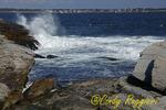 Coastline off Beavertail Lighthouse, Jamestown Rhode Island