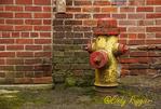 Peeling Fire Hydrant
